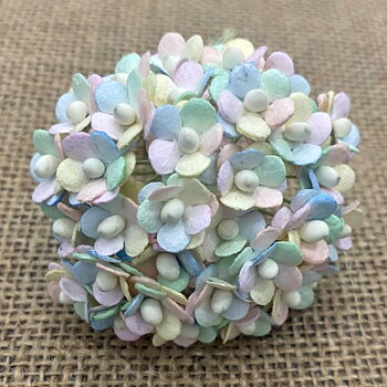 100 Miniature Mixed Pastel Rainbow Sweetheart Blossom Flower