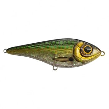 Buster swim - Emerald herring