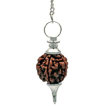 Rudraksha Pendulum silvercolored -- 10 g; 4.5 cm