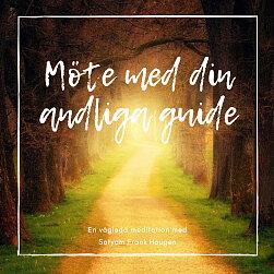 Ladda ner: Möte med dina andliga guider