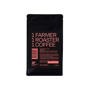 April kafferosteri - Kenya - Washed SL28, SL34, Batian & Ruiru 11 - Mellanrostade hela kaffebönor - 250g