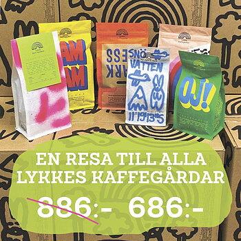Lykke Kaffegårdar - Kafferesa - 6 påsar kaffe från Lykke - Hela kaffebönor som passar brygg & espresso