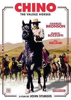 Chino - The Valdez Horses
