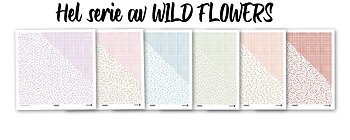 MODASCRAP - WILD FLOWERS    DOUBLE  SIDED  COLLECTION 6 PCS