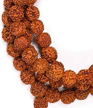 Buddhist Mala Prayer Beads NECKLACE - Rudraksha 10mm