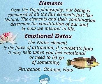Shoti Maa Ayurvedic Organic Tea - EMOTIONAL DETOX, Sweet Hibiscus & Mint