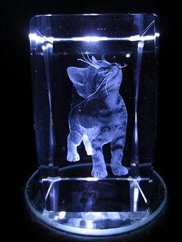 Kristall - Katt