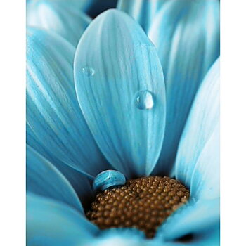 Diamond painting. Blue Drop. WD020