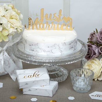 Scripted Marble - Just Married - Cake Topper