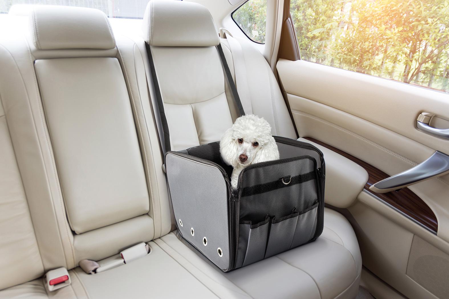 Record - Hopfällbar Transportväska till Hund eller Katt - Fästes i bilen