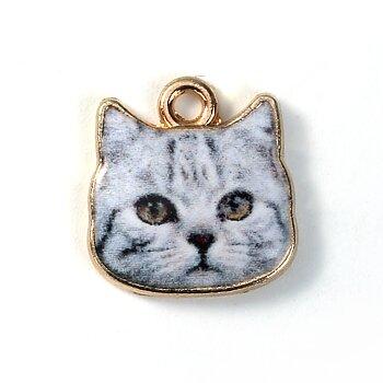 Charm   Enameld Cathead grey