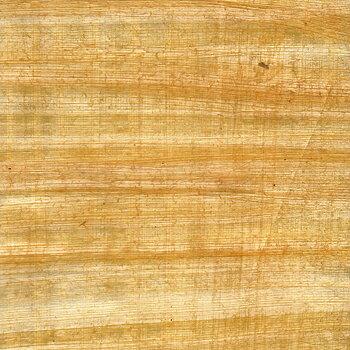 Papyrus, 31x22 cm