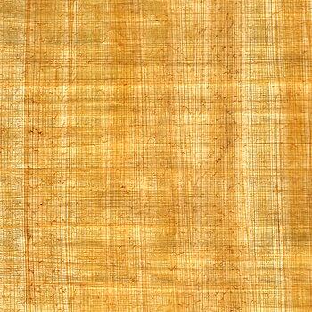 Papyrus, 62x41 cm