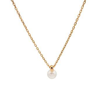 Nätt kort pärlhalsband i guld på stål - guldhalsband för dam | C Stockholm halsband online