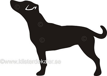 Bildekal Jack Russell Terrier profil 1