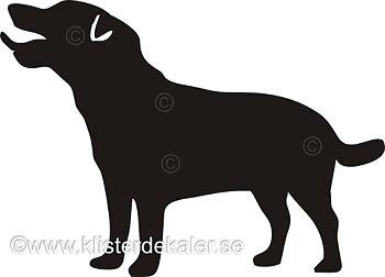 Bildekal Jack Russell Terrier profil 3
