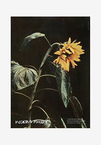 Poster, John Hertzberg, Titel saknas