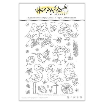 HONEY BEE STAMPS - Birds of Paradise | 6x8 Stamp Set