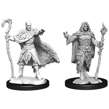 D&D Nolzurs Marvelous Miniatures: Male Human Druid