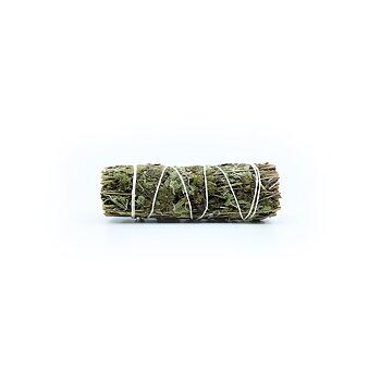 Oregano Bundle (Origanum vulgare)