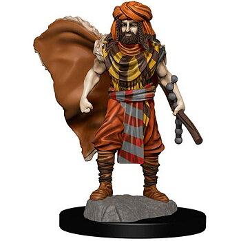 D&D Premium Painted Figure: Male Human Druid