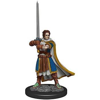 D&D Premium Painted Figure: Male Human Cleric
