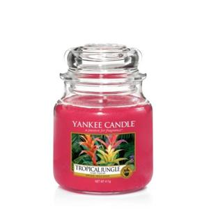 Tropical Jungle, Medium Jar, Yankee Candle