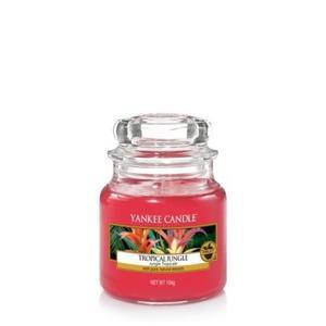 Tropical Jungle,  Small Jar, Yankee Candle