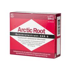 Arctic Root 40st
