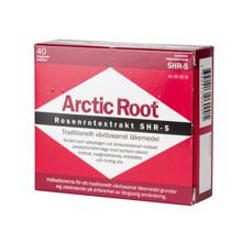 Arctic Root 80st