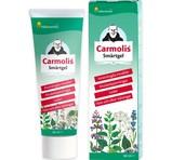 Carmolis Smärtgel