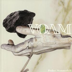 Peder Mannerfelt - Like We Never Existed / Voam