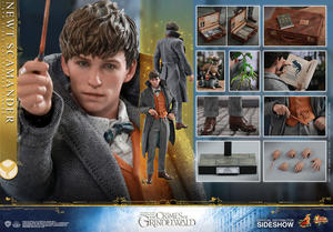 Hot Toys -  Newt Scamander Sixth Scale Figure