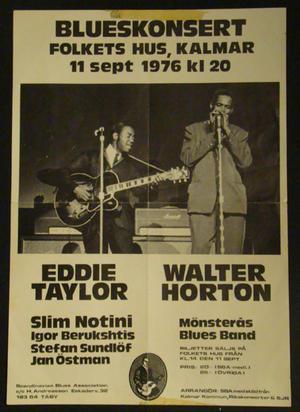 WALTER HORTON & EDDIE TAYLOR - Blueskonsert - Folkets hus Kalmar 1976