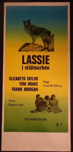 LASSIE I VILDMARKEN (ELIZABETH TAYLOR )