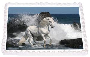 Häst 11