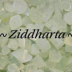 10gr New Jade chips