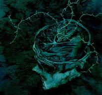 Nachtmystium - Instinct: Decay [CD]