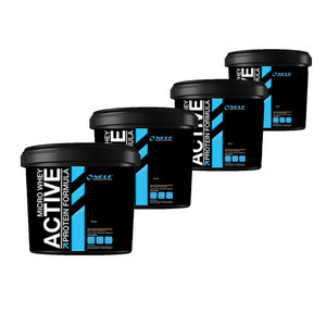 Self Micro Whey Active 16kg - 162kr/kg