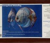Discus Energy Food Weissflog 500gr