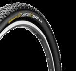 Race king RS 29er