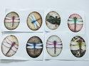 Bilder till ovala glascabochoner, 28*20 mm. Trollsländor, 4 stycken.