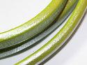 Limegrönt Regaliz läder, 10*6 mm. Priset är per 5 cm.