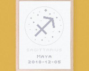 Skytten  - Zodiac signs