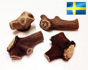 Horntugg/tugghorn, GIGANT