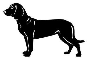 Grupp 6 - FCI nr. 213 / Hannoveransk Viltspårhund (Siluett)