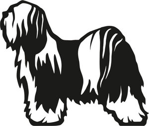 Grupp 9 - FCI nr. 209 / Tibetansk Terrier (Siluett)