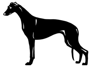 Grupp 10 - FCI nr. 158  / Greyhound (Siluett)