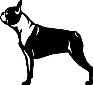 Grupp 9 - FCI nr. 140 / Boston Terrier (Dekal)