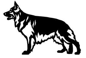 Grupp 1 - FCI nr. 166 / Tysk Schäferhund Långhårig (Siluett)